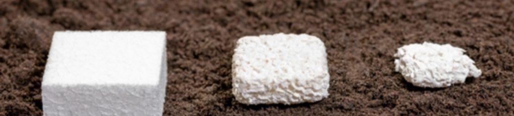 Kaneka Biodegradable Polyme