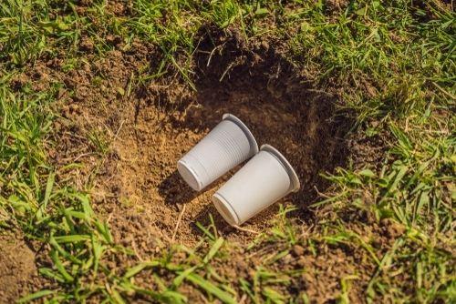Biodegradability