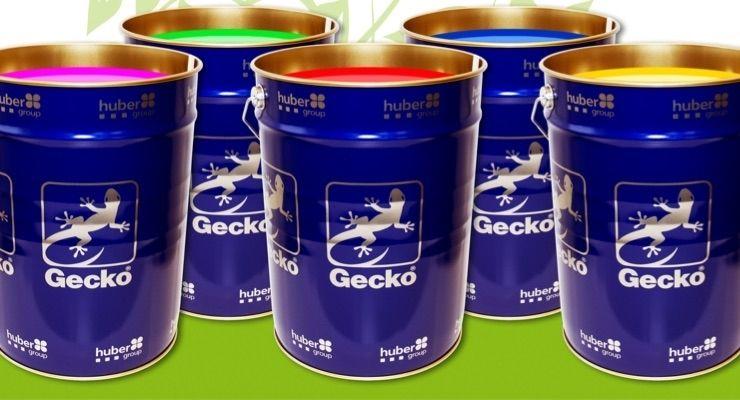 Hubergroup's Gecko