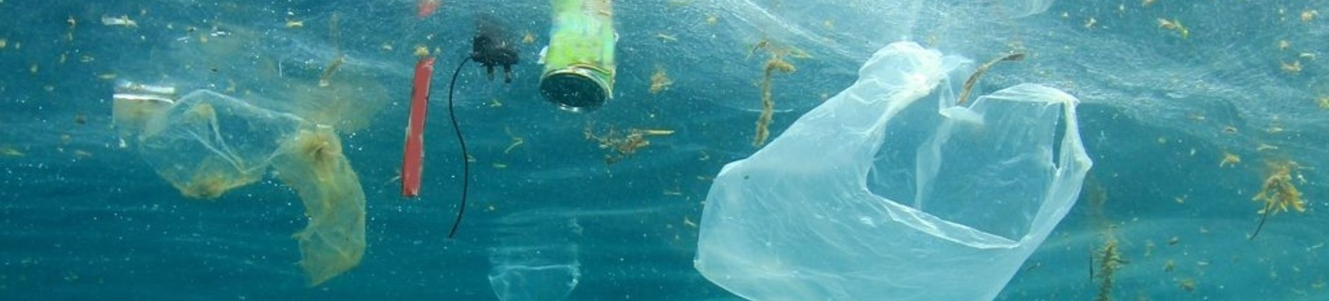 Reduce Marine Litter