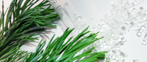 cellulose-based food packaging material