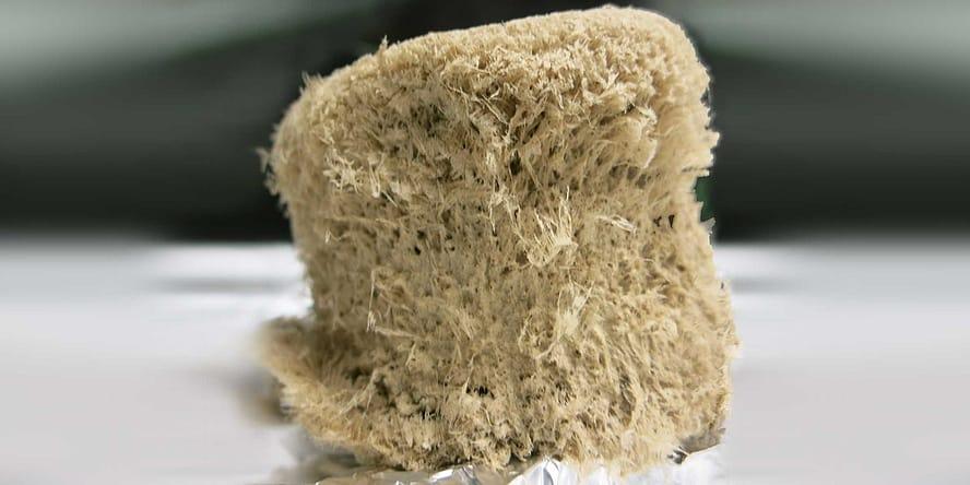 Microfibrillar Cellulose by tugraz