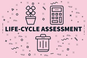 Comparative Life Cycle Assessment of different pouches and alternative packaging systems for food (Pasta Sauce and Olives) on the European market