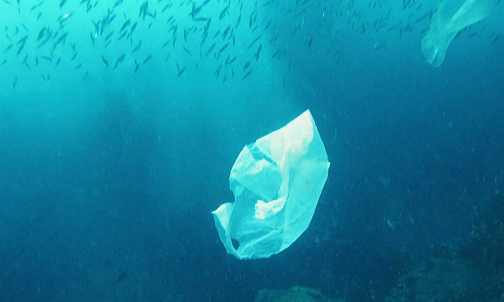 Natural alternatives to single-use plastic
