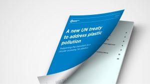 UN Treaty white paper